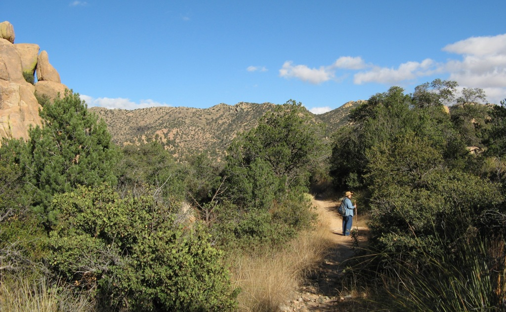 Cochise Stronghold Hiker